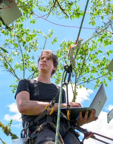 Electronic 'ears' listen to world's rainforests